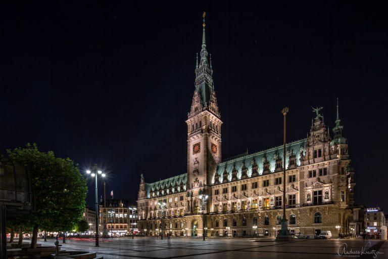 Hamburger Rathaus X