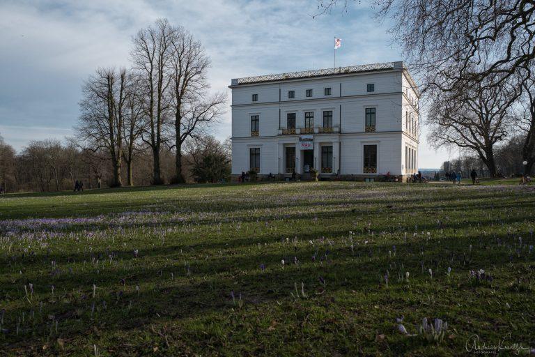 Jenisch-Haus