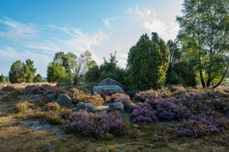 Totengrund in der Lüneburger Heide