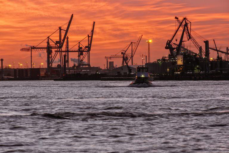 Morgens am Hafen IV 011215