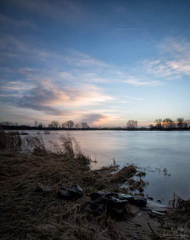 Morgens an der Elbe III