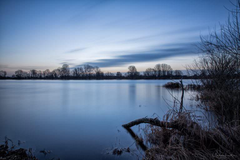 Morgens an der Elbe VIII