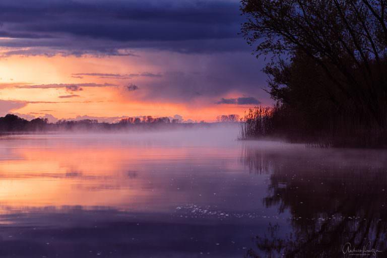 Nebel auf der Elbe II