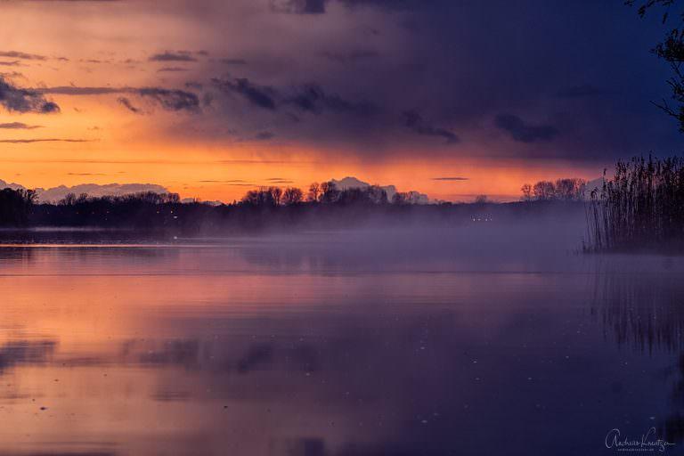 Nebel auf der Elbe VI
