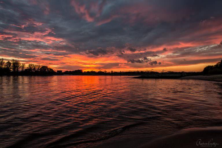 Sonnenuntergang an der Elbe V