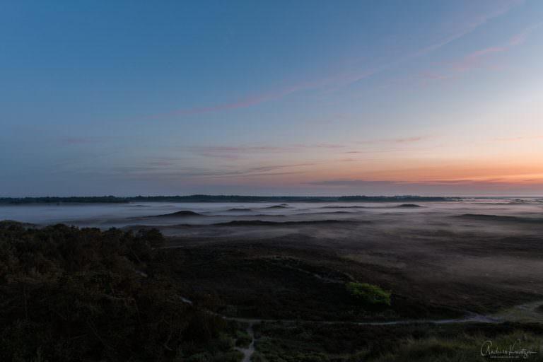 The Fog II