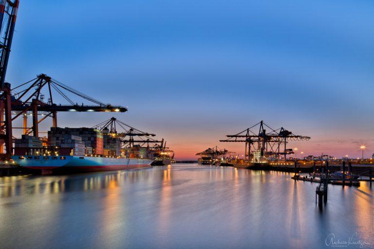 Waltershofer Hafen VIII
